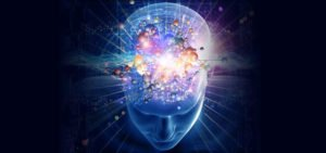 Neuroplasticity And The Brain